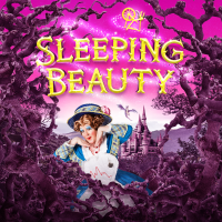 Sleeping Beauty to rest for another year as panto postponed