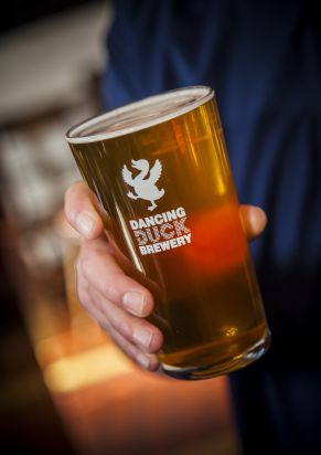Image for Dancing Duck Brewery Night